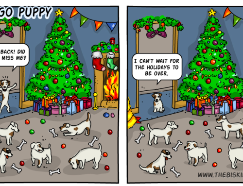 Ego Puppy's Tips to a Stress Free Holiday Season